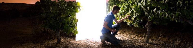 Man in Garden with Light